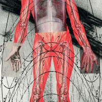 Body Parts - An Installation of New Work by Satch