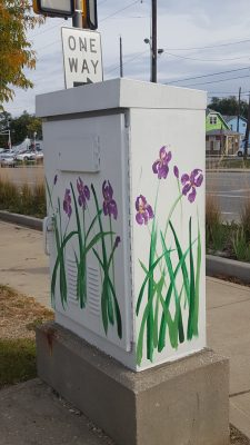 Irises 4