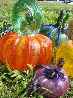 8th Annual Great Glass Pumpkin Patch