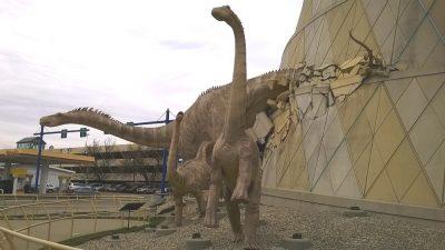 The Children's Museum Dinosaurs