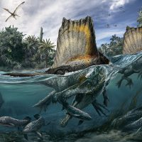 National Geographic Live: Spinosaurus: Lost Giant of the Cretaceous with Nizar Ibrahim