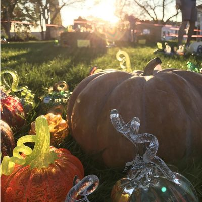 9th Annual Great Glass Pumpkin Patch