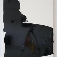 Lauren Zoll: Wavelength