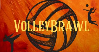 VolleyBrawl