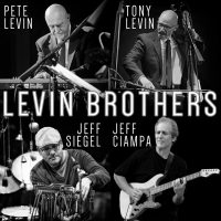Levin Brothers Band