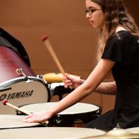 Sandy Feldstein National Percussion Festival I