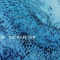 Valerie Eickmeier: Choice and Chance