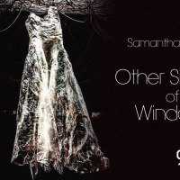 Samantha Ortiz: The Other Side of the Window