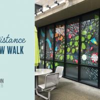 Social Distance Window Walk