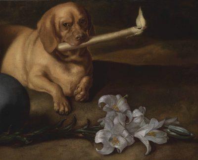 Juan de Pareja: A Painter's Story