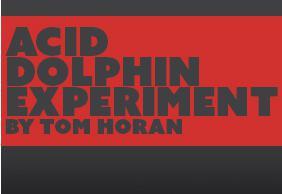 Acid Dolphin Experiment