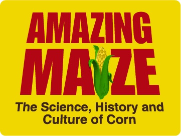 Amazing Maize: The Science, History and Culture of Corn