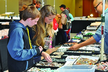 GeoFest: The 14th Annual Indiana Stae Museum Fossil, Gem and Mineral Show