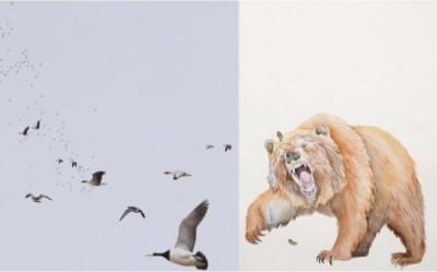 Jenny Kendler and Molly Schafer: Animal Umwelt